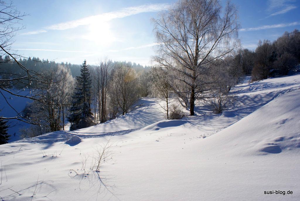 Ausblick Thüringer Wald